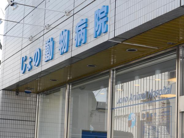 大阪府泉佐野市羽倉崎駅前の動物病院
